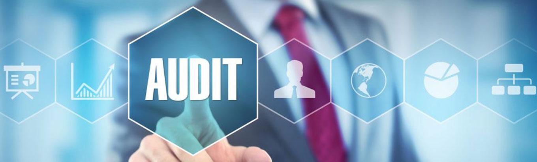 IBIS-Umwelttechnik---Audit